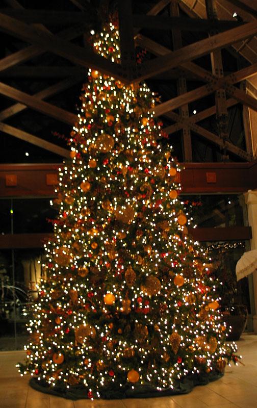 Hobby Lobby Christmas Lights